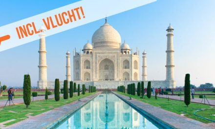 Dagaanbieding – Rondreis India