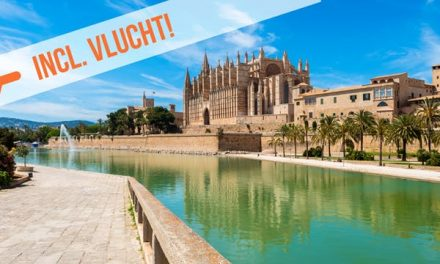 Dagaanbieding – Stedentrip Mallorca