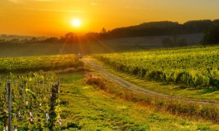Dagaanbieding – Rondreis Oost-Frankrijk
