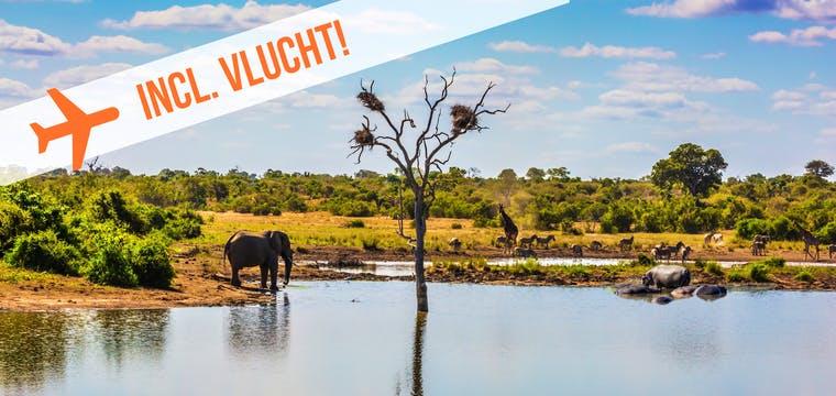 Dagaanbieding – Rondreis Zuid-Afrika